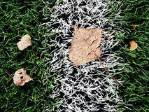 End of football season. Plastic green football turf Royalty Free Stock Image