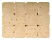 End grain of the pine Stock Image