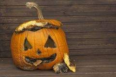 End of Halloween, moldy pumpkin. Remembering Halloween. Head carved from a pumpkin on Halloween. Royalty Free Stock Photography