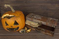 End of Halloween, moldy pumpkin. Remembering Halloween. Head carved from a pumpkin on Halloween. Stock Photos