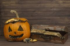 End of Halloween, moldy pumpkin. Remembering Halloween. Head carved from a pumpkin on Halloween. Stock Photography