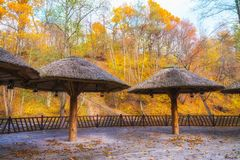 End off season Belmontas park outside cafe closed for winter season. big terrace with view Vilnia river, beautiful autumn day Royalty Free Stock Photo