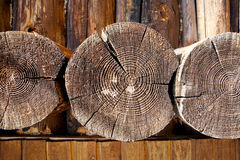 End of old logs Stock Image