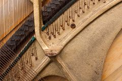 The strings of a musical instrument stock image