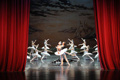 At the end of the play-The last scene of Swan Lake-ballet Swan Lake. In December 20, 2014, Russia's St Petersburg Ballet Theater in Jiangxi Nanchang performing Stock Photography