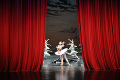 At the end of the play-The last scene of Swan Lake-ballet Swan Lake Royalty Free Stock Photo