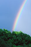 End of the rainbow. Beautiful end of the rainbow in green trees Royalty Free Stock Photo