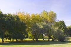 End of summer. Autumn garden stock photo