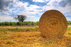 End of Summer. The summer is going to the end, bale of straw laying around on the fields. The very blue cloudy skye with one tree in the background Royalty Free Stock Images