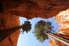 The end of wall street, Bryce Canyon Stock Photo