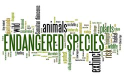 Endangered species. Environment issues and concepts word cloud illustration. Word collage concept Royalty Free Stock Photos