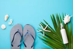 Endecha del plano del concepto de las vacaciones de verano Accesorios de la playa y opinión superior de las cáscaras del mar Fotografía de archivo