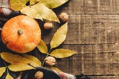 Endecha del plano del feliz Halloween o de la acción de gracias calabaza con las hojas Imagenes de archivo