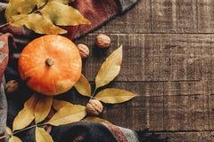 Endecha del plano del feliz Halloween o de la acción de gracias calabaza con las hojas Foto de archivo
