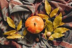 Endecha del plano del feliz Halloween o de la acción de gracias calabaza de otoño con el co Imagen de archivo