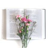 Endecha plana: Biblia y rosa, ramo rojo, color de rosa de la flor En el fondo blanco foto de archivo