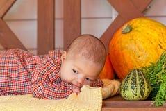 Endechas del bebé en un banco de madera fotos de archivo