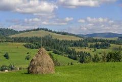 Endensommer in Karpaty, Stockfotos