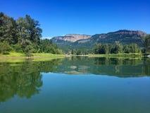 Enderby-Klippen, die in Shuswap-Fluss, Enderby, Britisch-Columbia, Kanada sich reflektieren Stockbilder