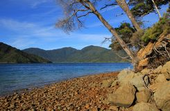 Endeveaour Inlet, bay in the Marlborough Sounds Royalty Free Stock Images