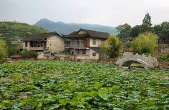 Endiguez les pleines usines i dans le village antique de Furong (ketmie) Photographie stock libre de droits