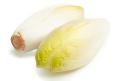 Endive Images stock
