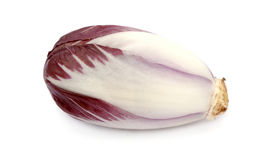 Endive. Red endive in a horizontal position Royalty Free Stock Images