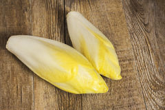 Endive lying Royalty Free Stock Photos