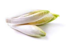 Endive over white background Royalty Free Stock Image