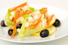 Endive Salad. With walnut, carrot, apple, and shallot garnished with grape and lemon Royalty Free Stock Images