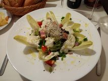 Endive Salad Royalty Free Stock Images