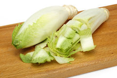 Endive Royalty Free Stock Photography