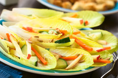Endive and Vegetable Salad. Fresh salad of endive leaves, cucumber, carrot, apple and sunflower seeds, photographed with natural light Selective Focus, Focus in Royalty Free Stock Photos