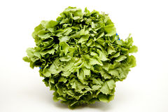 Endives salad Royalty Free Stock Photos