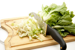 Endives salad with knife Stock Photography