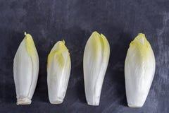Endivia van andijviecichorium met mooie zachte groene die bladeren, op leilijst worden gericht royalty-vrije stock afbeeldingen