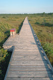Endless boardwalk. Over peat bog Royalty Free Stock Photography