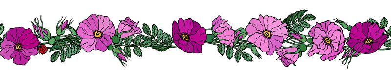 Endless Brush Border with Wild Roses. Summer Flowers Greeting Card or Wedding Background. Hand Drawn Illustration. Doodle Style. Endless Brush Border with Wild Royalty Free Stock Photos