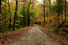 Endless. Colors on a lonely road on a fall day Royalty Free Stock Photo