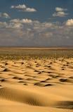 Endless desert... stock photo