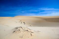 Endless desert. Endless white san desert of Veitnam Royalty Free Stock Photos