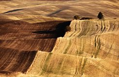 Endless Hill Fields Stock Images