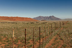 Endless fence in desert landscape Royalty Free Stock Photo