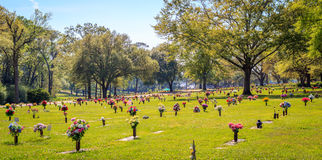 Endless Field of Flower Dedications at Cemetery Stock Images