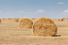 Endless fields of hay bails. Agricultural fields of hay bails royalty free stock photo