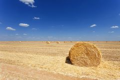 Endless fields of hay bails. Agricultural fields of hay bails royalty free stock photos