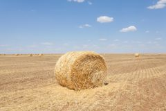Endless fields of hay bails. Agricultural fields of hay bails stock photos
