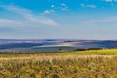 Endless fields near Priseltsi village royalty free stock photography