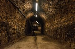 Endless floor in a cellar - with rustic brick walls. European underground scene for Halloween royalty free stock photos