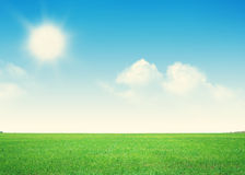 Endless green grass field and blue sky with clouds Royalty Free Stock Images